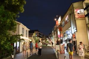 cat street (4)