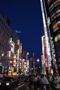 Shinjunku by Night 3