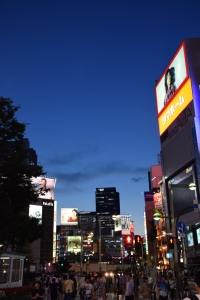 Shinjuku by Night 1