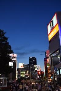 Shinjuku by Night 1