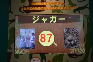 NHK (3)