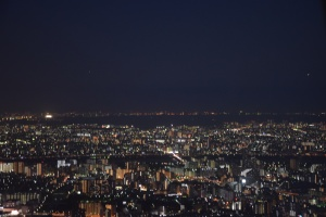 Skytree (3)