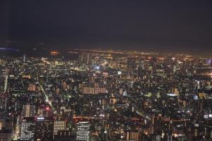 Skytree (5)