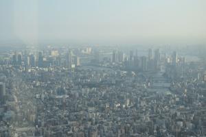 Skytree Daytime (3)