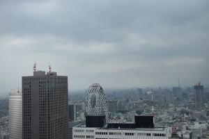 Tokyo vom Rathaus