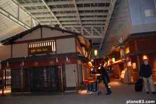 Haneda Airport (5)