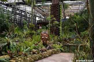 Pineapple Park (5)