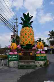 Pineapple Park (7)