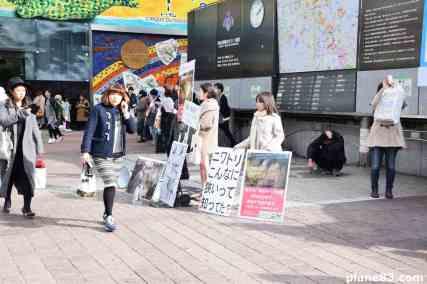 Shibuya (1)