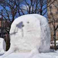 Snow Festival Sapporo (81)