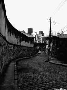 Rio (24)